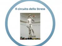 Il Circuito dello Stress
